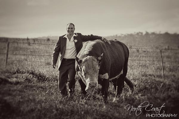northcoast Snapshot Sunday A Groom & A Cow