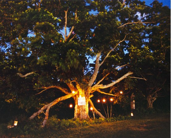 Candlelit lanterns hung from a designated Kissing Tree
