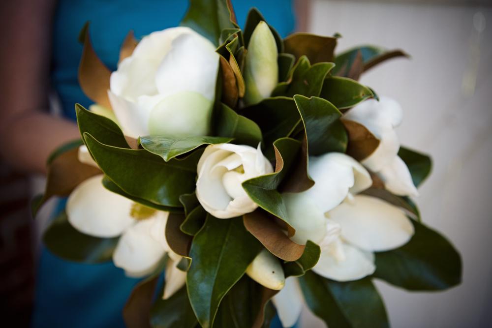 nk magnolias Magnificent Magnolias
