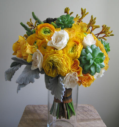 marigold Stunning Succulents