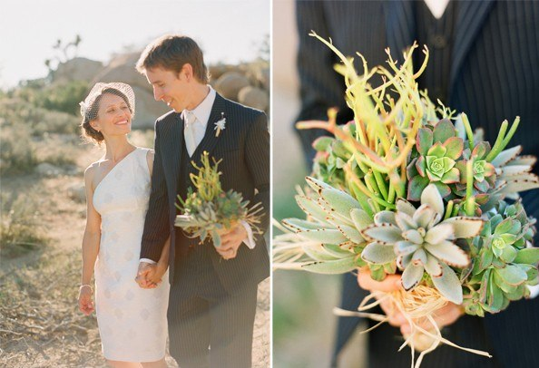 val brett ii once wed Stunning Succulents