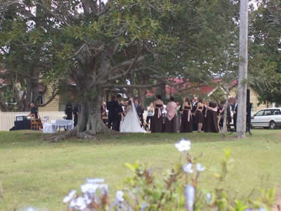 wedding under tree A Barn Wedding Queensland