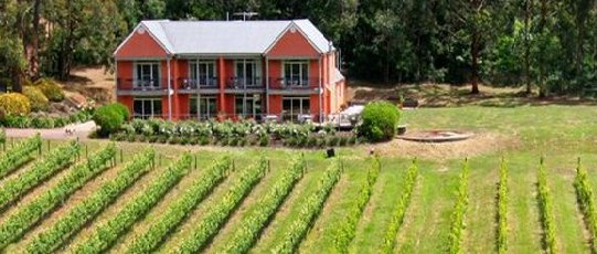 Mantons Creek Vineyard Ten Mornington Peninsula Wedding Venues