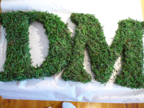 DIY Moss Letters003 DIY Moss Letters Project