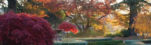 Secret-Garden-Southern-Highlands-Hopewood-Country-House