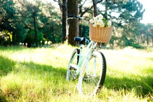 leisa-brett-bicycle-engagement91