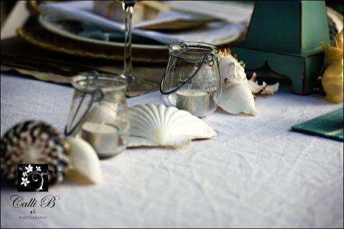 noosa-beach-wedding-shoot34