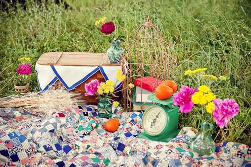 alyson-craig-picnic-engagement003