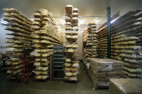 ashgrove-cheese-resize