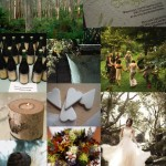 Lucies-eco-occasion