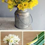 daffodil-wedding-inspiration