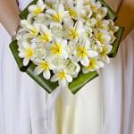 frangipani-bouquet