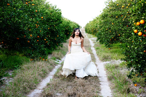 orange-grove-bridal-shoot013