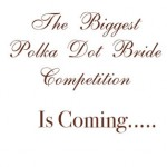 polkadotbridecompetition11