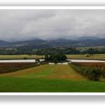 holiday-snapshot-yarra-valley