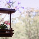 Clay & Tamara - Amore at Amamoor on Vimeo-1