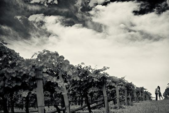 Vineyard Engagement Session (11)