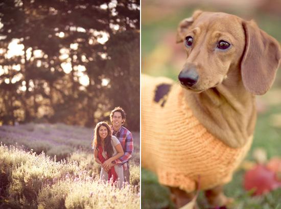 Autumn Engagement Shoot015 Tatiana and Jamies Autumn Engagement Shoot