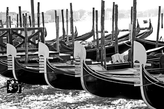 Venice_0005