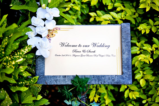 palm cove destination wedding028 Sarah and Ruans Palm Cove Destination Wedding