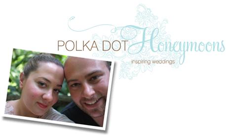 Polka Dot Honeymoons Logo Oli and Mikes Wedding