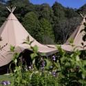 wedding teepee australia005