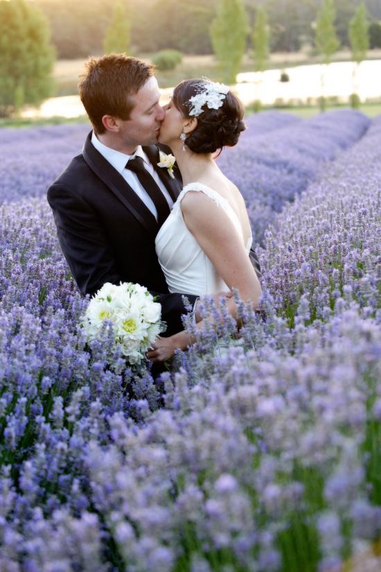 daylesford wedding027 Vanessa and Richs Daylesford Lavender Farm Wedding