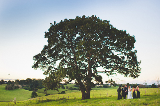 elegant maleny wedding041 Michelle and Kurts Elegant Maleny Wedding