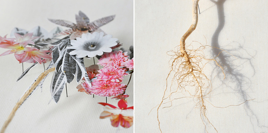 paper flowers Anne Ten Donkelaar012 Flower Art by Anne Ten Donkelaar