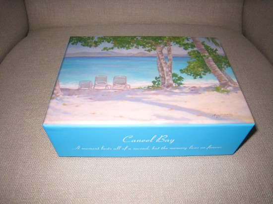 045 550x412 Your Honeymoon Must Buy: A Memory Box
