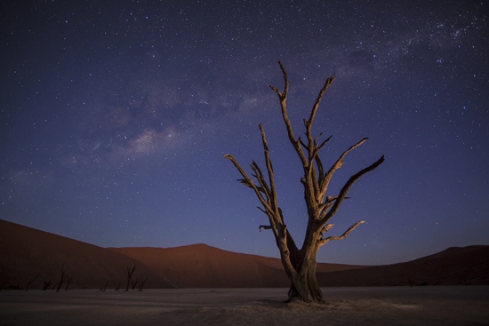 Deadvlei Namibia A Wedding Cinematographers Journey To Africa