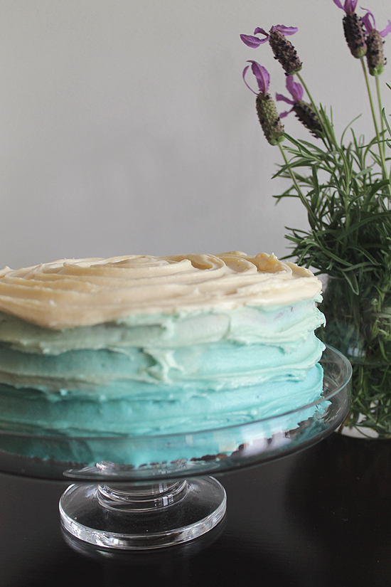 Ombre Cake Decorating Tutorial0942 DIY Rustic Ombre Cake Decorating Tutorial