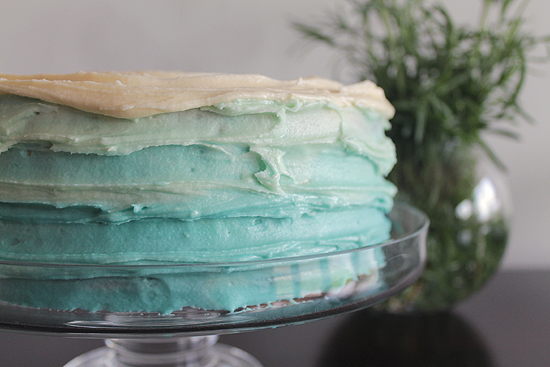 Ombre Cake Decorating Tutorial0944 DIY Rustic Ombre Cake Decorating Tutorial