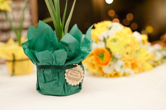 daffodil wedding039