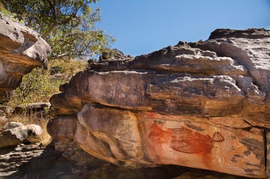kakadu national park0971 550x366 Picture Perfect Kakadu