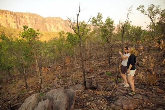 kakadu national park0972 550x366 Picture Perfect Kakadu