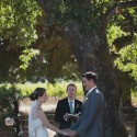 sonoma valley wedding004