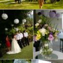 little lace wedding planner
