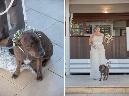 Australian groom blog 06