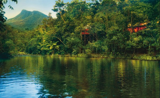 Silky Oaks Lodge and Healing Waters Spa 550x339 Eco Love In The Daintree