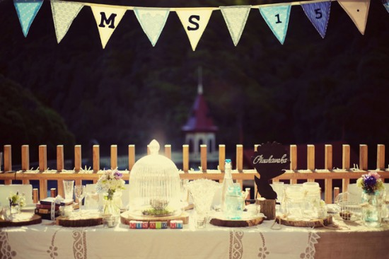 Our rustic, retro and in love with birds head table
