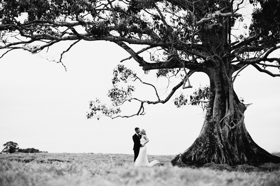 romantic maleny wedding27