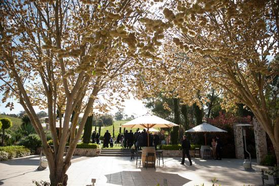 adelaide hills winery wedding10