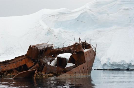 830285 10152589498365232 581636535 o 550x365 Antarctic Adventure Honeymoon