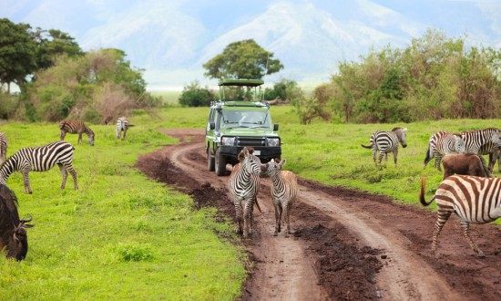 Africa Honeymoon Destination