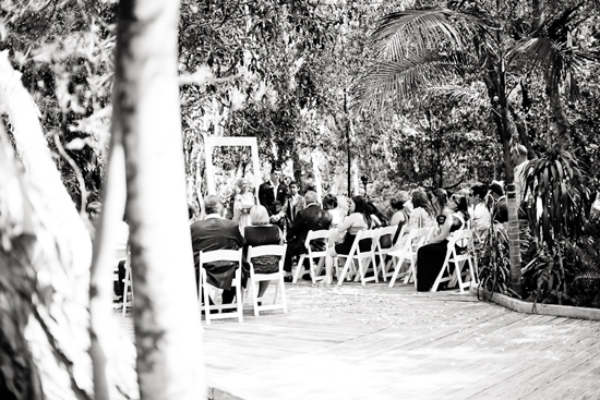 byron bay rainforest wedding17 Michelle and Mirsads Byron Bay Rainforest Wedding