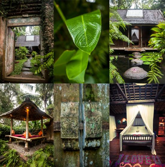 Bali blog 2 550x557 Our Honeymoon In Bali