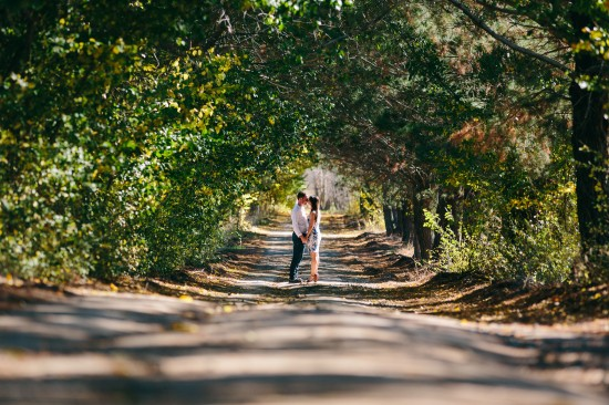 pic4proposal1 550x366 Chris and Audreys Autumn Love Story Shoot