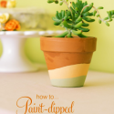 Peach-sage-dipped-pot-title-550x826