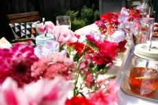 Colourful Valentines Backyard Soiree001